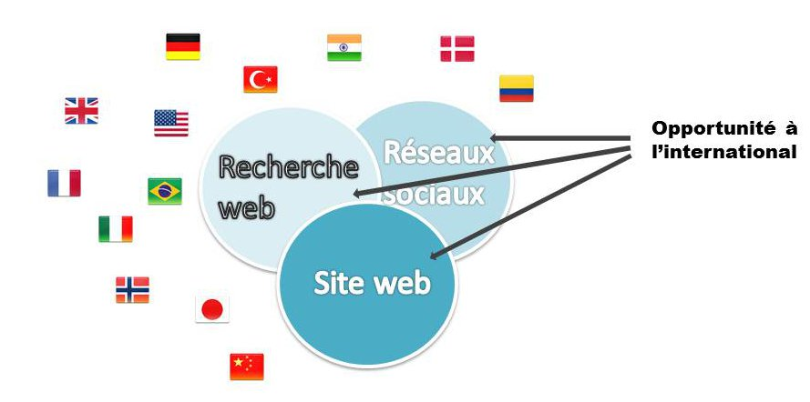 stratégie web à l'international